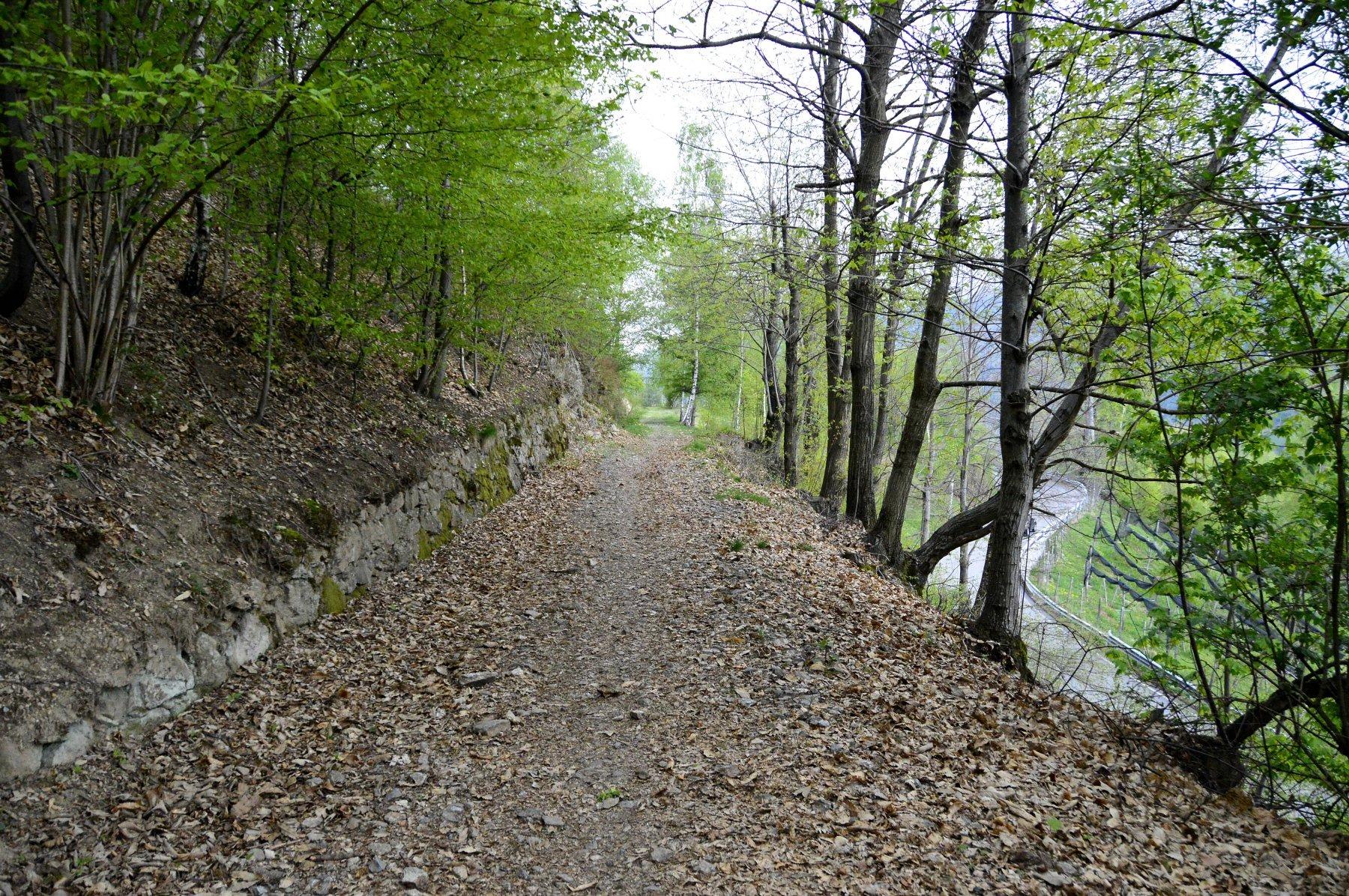 oropa-santuario-di-da-favaro-per-la-tramvia11bc-1622222187.jpeg