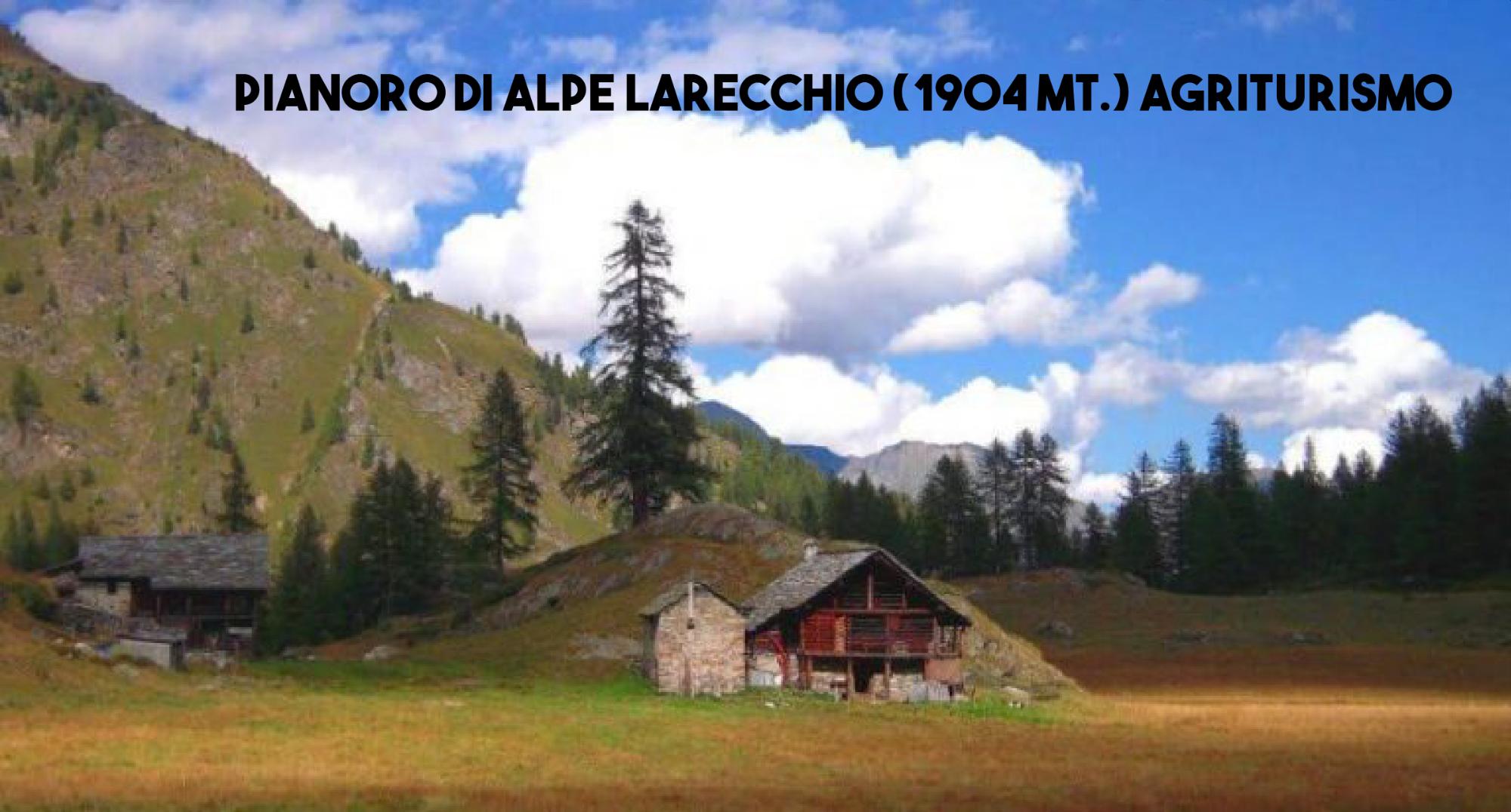 alpe-larecchio-768x413-1625562610.png